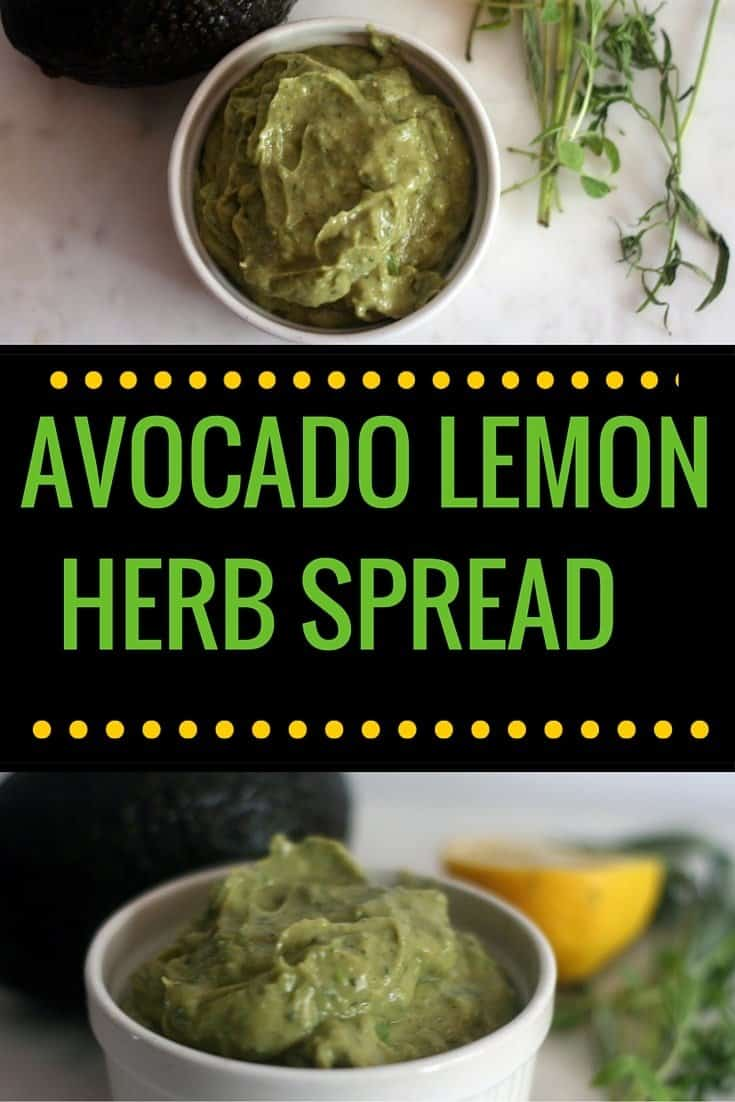 avocado lemon herb spread