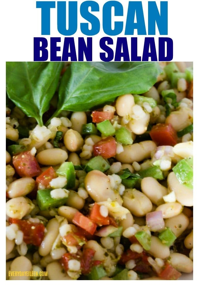 Tuscan Bean Salad is a super flavorful and easy to put together! A delicious side salad or use as a dip with chips! A Costco copycat recipe that is always a crowd pleaser! #tuscanbeandip #beandip #costcocopykatdip #everydayeileen via @/everydayeileen/