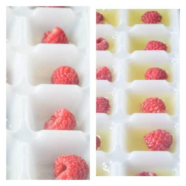 fruit and fruit juice frozen ice cubes for summer punch