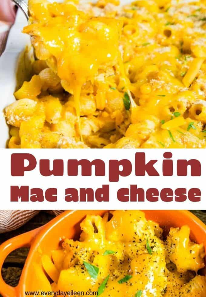 Delicious pumpkin mac and cheese, a creamy and flavorful casserole filled with fall flavors. Cheesy goodness and a great family dinner.  A great make-ahead meal that freezes well! Great for a crowd. Perfect for Thanksgiving #pumpkinpasta #Thanksgiving #pumpkin #everydayeileen  via @/everydayeileen/