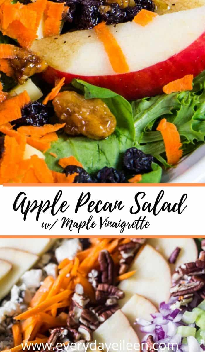Apple Pecan Salad with Maple Cider Vinaigrette is a perfect fall salad. This salad comes together in just minutes. The Maple Cider Vinaigrette is epic! A great light lunch. A perfect appetizer anytime, great for Thanksgiving! #ad #envyapples #salad #Thanksgiving #applesalad #maplecider #everydayeileen  via @everydayeileen