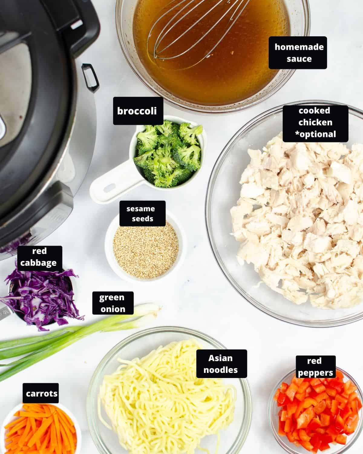 Ingredients to make Chow Mein in the Instant Pot