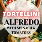 A collage of tortellini in a creamy sauce with spinach and tomatoes.